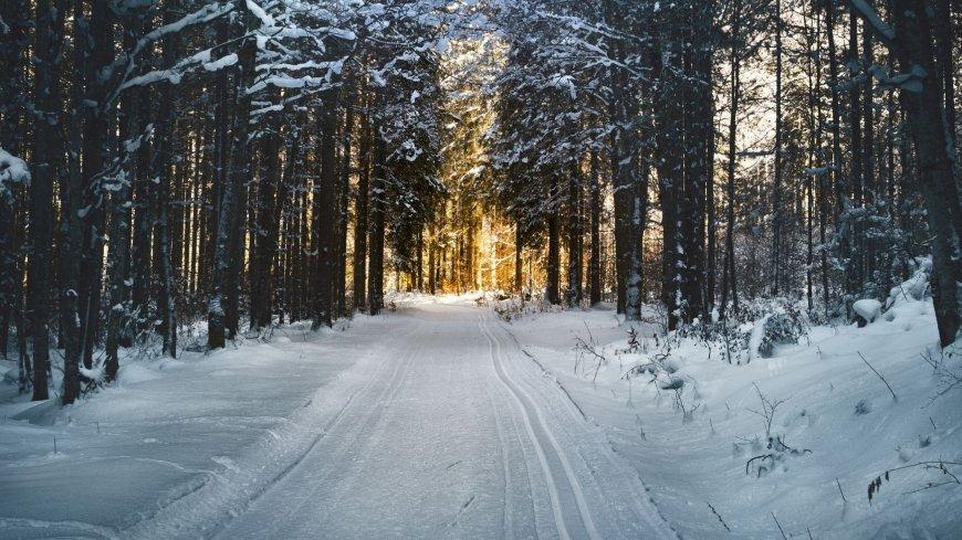 Informator o zimowym utrzymaniu dróg wojewódzkich w sezonie 2020/2021
