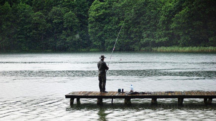 Wędkarz z wędką stojący na pomoście na jeziorze. W tle bujne drzewa,